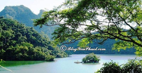 Nên du lịch hồ Ba Bể vào thời điểm nào? Địa điểm ngắm cảnh, chụp ảnh đẹp ở hồ Ba Bể