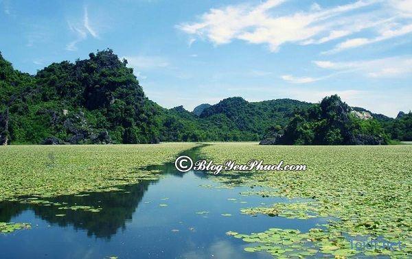 Kinh nghiệm du lịch Hồ Quan Sơn