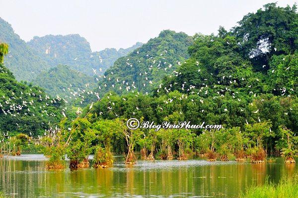 Kinh nghiệm du lịch Thung Nham - thời điểm đẹp nhất để đi phượt Thung Nham, nên đi du lịch Thung Nham vào mùa nào, tháng mấy?