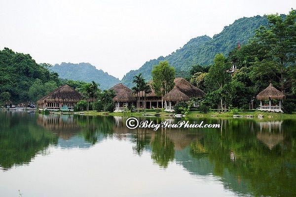 Kinh nghiệm du lịch Thung Nham: Địa điểm tham quan, vui chơi hấp dẫn, nổi tiếng ở Thung Nham