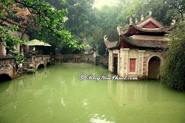 Kinh nghiệm du lịch Việt Phủ Thành Chương- nên đi đâu chơi? Phong cảnh đẹp ở Việt Phủ Thành Chương
