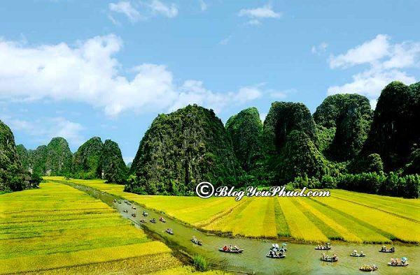Nên đi đâu chơi khi du lịch Ninh Bình? Địa điểm du lịch hot nhất ở Thái Bình