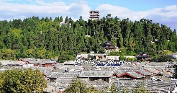 Những địa danh du lịch nổi tiếng Lệ Giang: Địa điểm tham quan, ngắm cảnh, chụp ảnh đẹp ở Lệ Giang