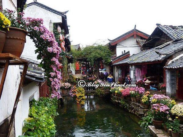 Những địa điểm du lịch Lệ Giang nổi tiếng: Nơi tham quan, vui chơi đẹp, hấp dẫn, thú vị ở Lệ Giang
