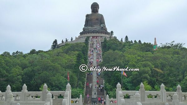 Du lịch Hồng Kong nên đi đâu chơi? Địa điểm tham quan, ngắm cảnh, chụp ảnh đẹp ở Hồng Kông