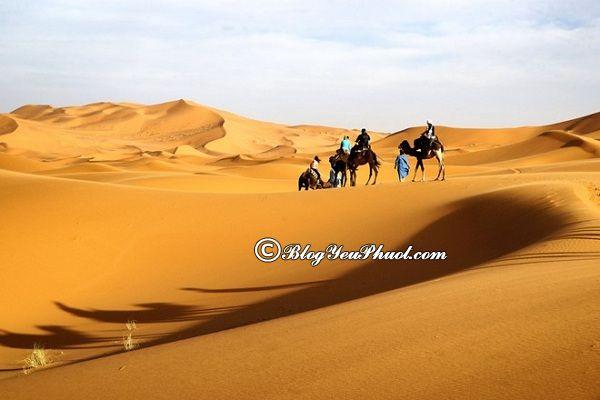 Những địa điểm tham quan ở Mông Cổ: Du lịch Mông Cổ nên đi chơi ở đâu?