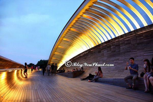 Nên đi đâu chơi khi du lịch Singapore? Địa điểm tham quan, vui chơi miễn phí ở Singapore đẹp, nổi tiếng