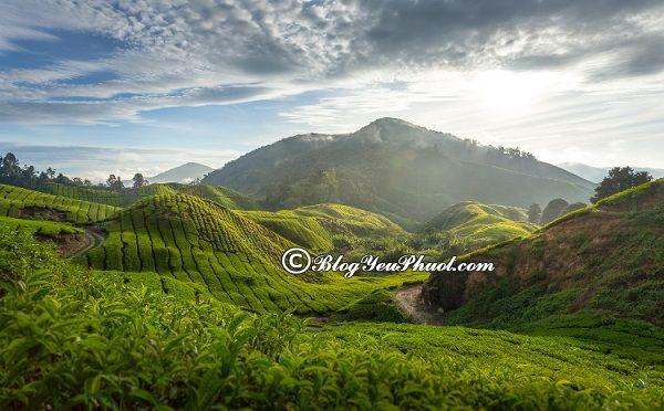 Du lịch Malaysia nên đi đâu chơi? Danh lam thắng cảnh đẹp, nổi tiếng nhất ở Malaysia