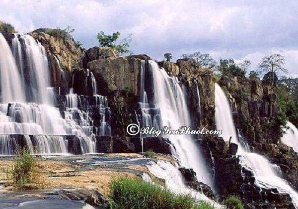 Những thác nước lớn nhất Việt Nam - Thác Pongour: Địa chỉ những thác nước nổi tiếng ở Việt Nam dành cho dân phượt