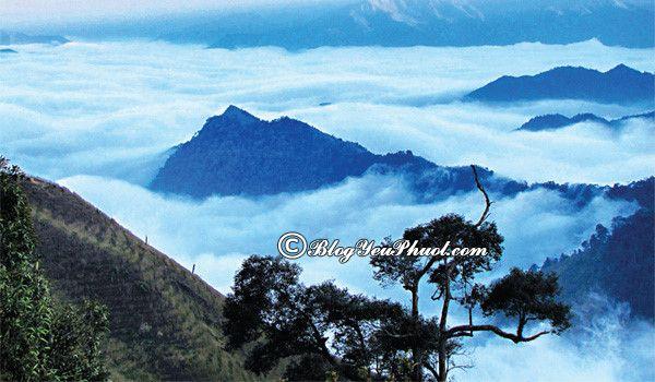 Phượt những ngọn núi đẹp nhất Việt Nam: Top các ngọn núi cao, hùng vĩ và nổi tiếng nhất ở Việt Nam