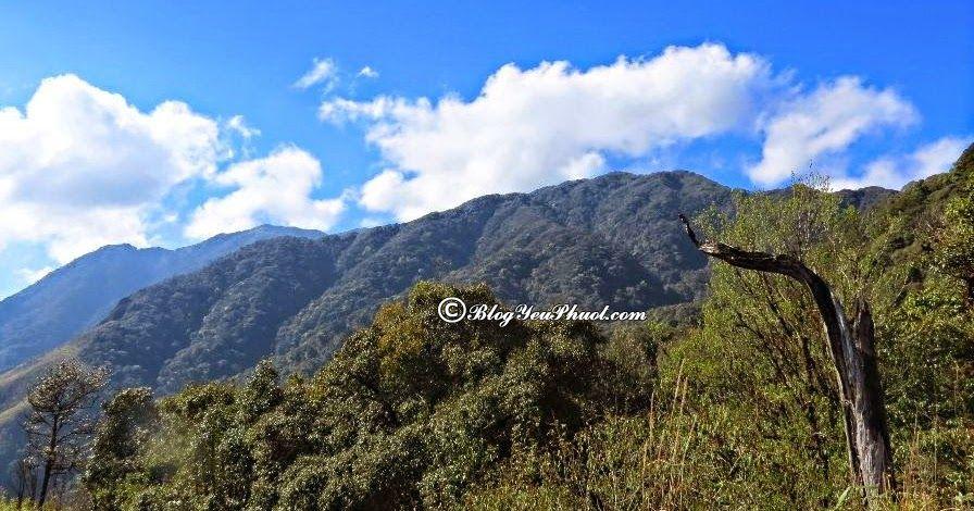 Địa điểm phượt lí tưởng ở Miền Bắc- nóc nhà Pu si Lung: Chinh phục những ngọn núi cao, phong cảnh đẹp nhất Việt Nam hiện nay