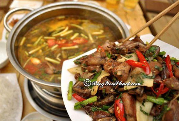Ăn lẩu ếch ở đâu tại Hà Nội ngon nhất? Địa chỉ quán lẩu ếch ngon, bổ, rẻ ở Hà Nội nổi tiếng nhất