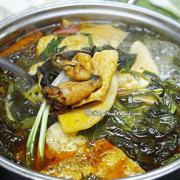 Địa chỉ quán lẩu ếch nổi tiếng Hà Nội: Ăn lẩu ếch ở đâu Hà Nội ngon, giá bình dân?