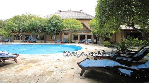 Khách sạn chất lượng, giá tốt ở Bali: Nên ở khách sạn nào khi du lịch Bali sạch sẽ, tiện nghi đầy đủ?