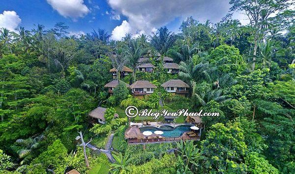 Nên ở khu nào khi du lịch Bali? Khách sạn ở Bali view đẹp, thoáng mát, sạch sẽ