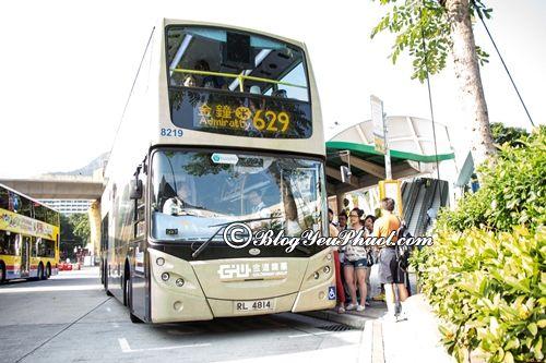 Đến Ocean Park Hong Kong bằng phương tiện gì?- Hướng dẫn đường đi du lịch Ocean Park Hong Kong bằng xe bus