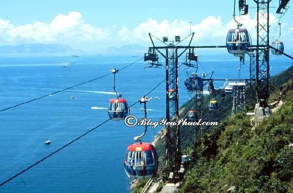 Đi Ocean Park Hong Kong chơi gì - Cáp treo Ocean Park: Du lịch Ocean Park Hong Kong có gì thú vị, hết bao nhiêu tiền?
