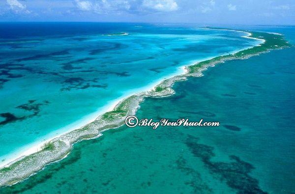 Kinh nghiệm du lịch Bahamas tự túc: Hướng dẫn lịch trình tham quan, vui chơi ở Bahamas giá rẻ