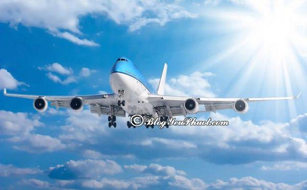 Du lịch Bahamas bằng phương tiện gì? Hướng dẫn đi du lịch Bahamas an toàn, thuận lợi