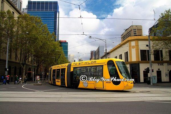 Phương tiện đi lại ở Brisbane: Nên đi chơi đâu khi du lịch Brisbane?