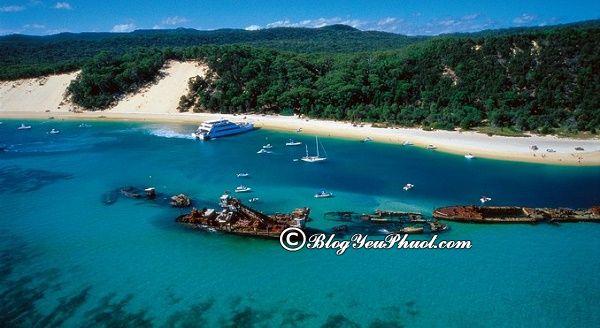 Điểm du lịch của Brisbane đẹp, nổi tiếng: Tư vấn lịch trình tham quan, vui chơi, ngắm cảnh, chụp ảnh đẹp ở Brisbane
