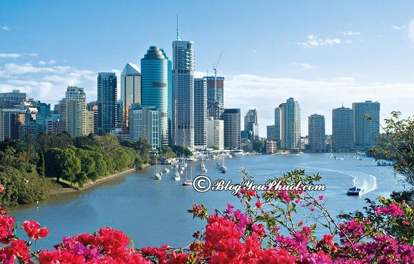 Thời điểm thích hợp đi du lịch Brisbane: Nên đi du lịch Brisbane mùa nào, tháng mấy?
