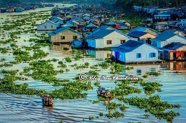 Tham quan làng nổi khi đi du lịch Châu Đốc: Du lịch Châu Đốc nên đi chơi ở đâu?