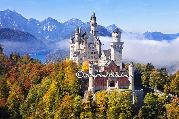 Du lịch Đức khám phá lâu đài cổ tích Neuschwanstein: Hướng dẫn lịch trình tham quan, vui chơi, ngắm cảnh, chụp ảnh đẹp ở Đức