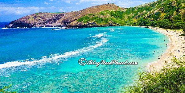 Nên đi du lịch Hawaii vào thời gian nào, mùa nào, tháng mấy? Tư vấn lịch trình tham quan, vui chơi, ăn uống khi đi du lịch Hawaii