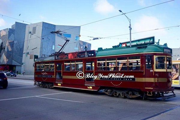Phương tiện đi lại ở Melbourne: Du lịch Melbourne bằng phương tiện gì nhanh, giá rẻ?