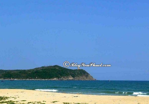 Nên đi đâu khi đi du lich Quảng Ngãi? Danh lam thắng cảnh đẹp, nổi tiếng ở Quảng Ngãi