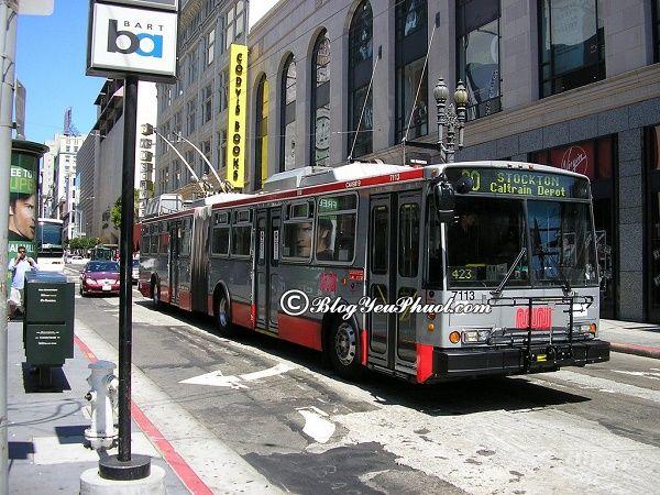 Phương tiện đi lại khi du lịch San Francisco: Nên đi du lịch xung quanh San Francisco bằng phương tiện gì?