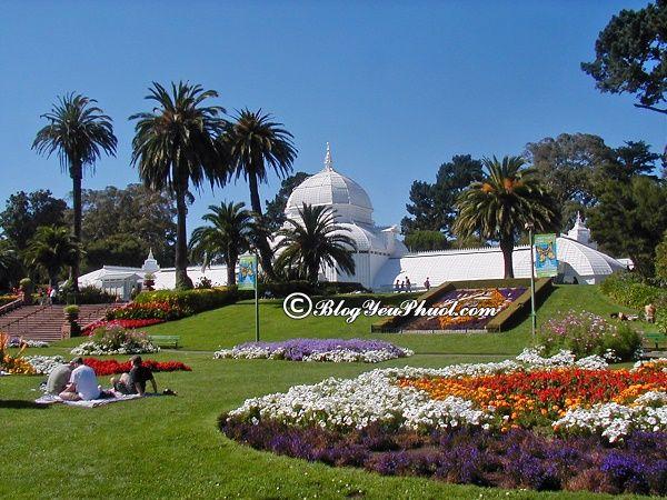 Điểm tham quan khi đi du lịch San Francisco: Kinh nghiệm du lịch San Francisco giá rẻ, chi tiết