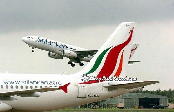 Đi du lịch Sri Lanka như thế nào? Giá vé máy bay du lịch Sri Lanka khoảng bao nhiêu tiền?