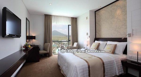 Ở đâu khi đi du lịch Tuy Hòa? Khách sạn, nhà nghỉ ở Tuy Hòa giá tốt, chất lượng, tiện nghi nên ở