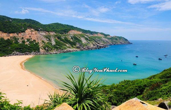 Tư vấn lịch trình tham quan, du lịch Tuy Hòa: Địa điểm du lịch ở Tuy Hòa đẹp, nổi tiếng