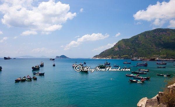 Kinh nghiệm du lịch Tuy Hòa tự túc, giá rẻ: Du lịch Tuy Hòa, Phú Yên nên đi chơi, ngắm cảnh, chụp ảnh ở đâu đẹp?