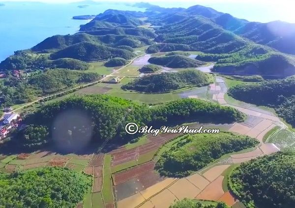 Kinh nghiệm du lịch đảo Cái Chiên tự túc, an toàn: Đi đâu chơi, ngắm cảnh, chụp ảnh khi đi du lịch đảo Cái Chiên
