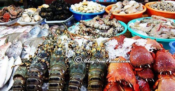 Ăn gì khi du lịch Hòn Sơn?- Hải sản Hòn Sơn rất tươi ngon và hấp dẫn, kinh nghiệm ăn uống khi đi phượt đảo Hòn Sơn, Kiên Giang