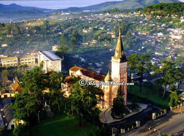 Kinh nghiệm du lịch Lâm Đồng tự túc, giá rẻ - Thời điểm đẹp nhất đi du lịch Lâm Đồng