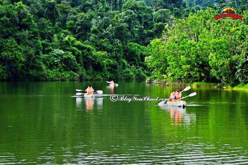 Du lịch Lâm Đồng khám phá Khu du lịch rừng Madagui, hướng dẫn đi tham quan, khám phá Lâm Đồng tự túc, giá rẻ