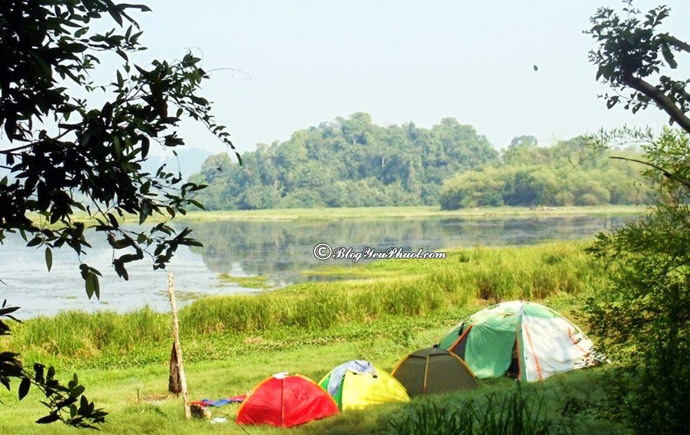 Ở đâu khi du lịch Nam Cát Tiên? Dựng lều ở đâu trong rừng Nam Cát Tiên an toàn, view đẹp