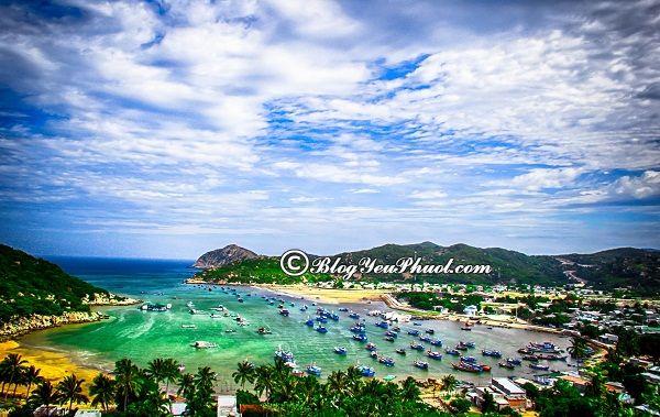 Kinh nghiệm du lịch Ninh Thuận giá rẻ: Hướng dẫn đi tham quan, khám phá Ninh Thuận