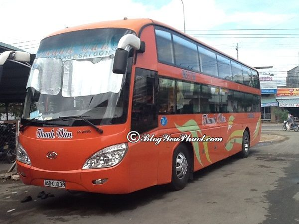 Đi du lịch Ninh Thuận bằng cách nào? Du lịch Ninh Thuận bằng xe khách