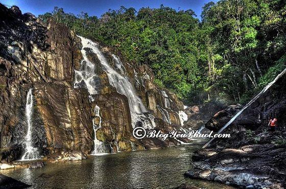 Du lịch Cao nguyên Cameron khám phá Núi Gunung Irau: Địa điểm tham quan, vui chơi, ngắm cảnh, chụp ảnh đẹp, nổi tiếng ở Cameron