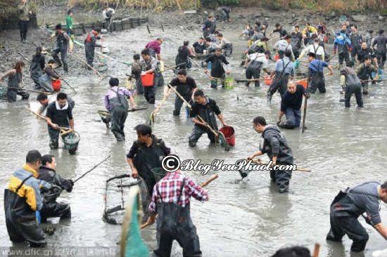 Kinh nghiệm đi tham quan, vui chơi ở thác Đá Hàn tự túc: Du lịch Thác Đá Hàn, thư giãn với hoạt động bắt cá dưới bùn