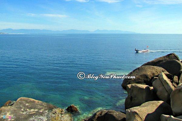 Du lịch Vân Phong khám phá vẻ đẹp của những khảm san hô ở Đảo Cỏ Ống, danh lam thắng cảnh đẹp ở vịnh Vân Phong