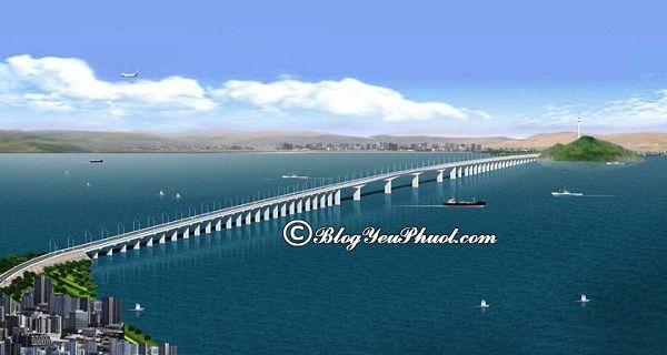 Cầu Thị Nại – cây cầu nổi tiếng ở Việt Nam: Việt Nam có cây cầu nào đẹp, độc đáo, dài nhất?