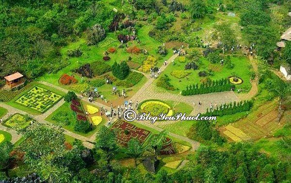 Những ngọn núi có phong cảnh đẹp nhất Việt Nam- Hàm rồng: Ngọn núi thích hợp du lịch, khám phá cảnh đẹp ở Việt Nam
