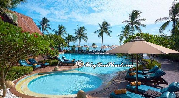 Ở khu nào khi đến du lịch Koh Samui? Khách sạn cao cấp, bình dân, giá rẻ ở Koh Samui đẹp, tiện nghi